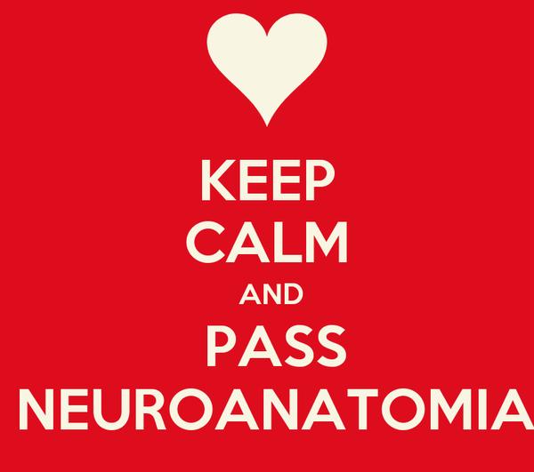 KEEP CALM  AND  PASS  NEUROANATOMIA