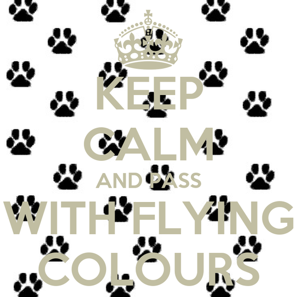 KEEP CALM AND PASS WITH FLYING COLOURS