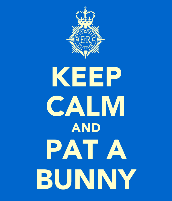 KEEP CALM AND PAT A BUNNY