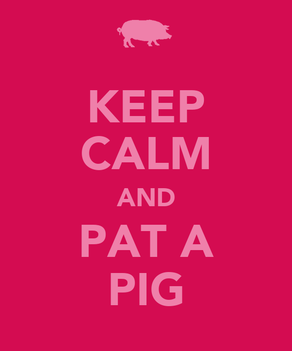 KEEP CALM AND PAT A PIG