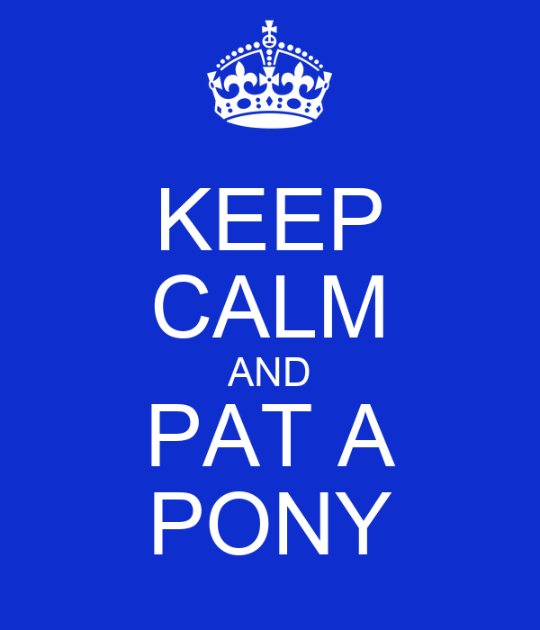 KEEP CALM AND PAT A PONY