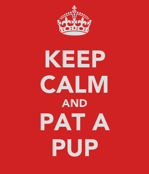 KEEP CALM AND PAT A PUP