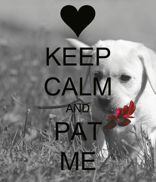 KEEP CALM AND PAT ME