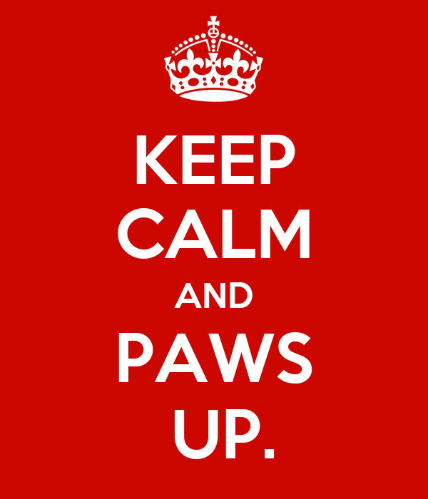 KEEP CALM AND PAWS  UP.