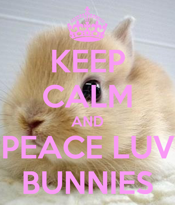 KEEP CALM AND PEACE LUV BUNNIES