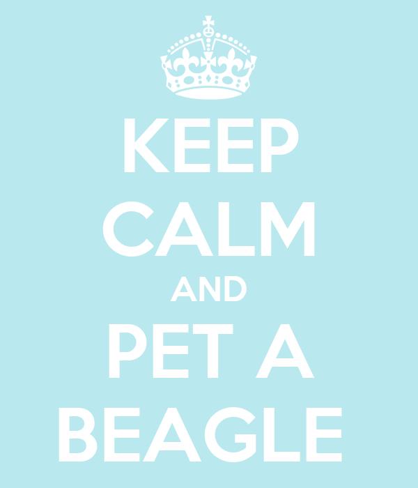 KEEP CALM AND PET A BEAGLE