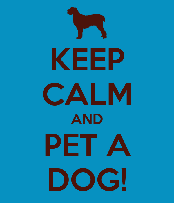 KEEP CALM AND PET A DOG!