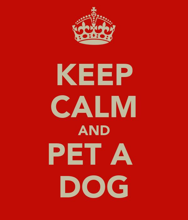 KEEP CALM AND PET A  DOG