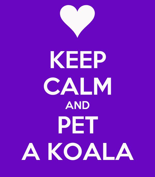 KEEP CALM AND PET A KOALA