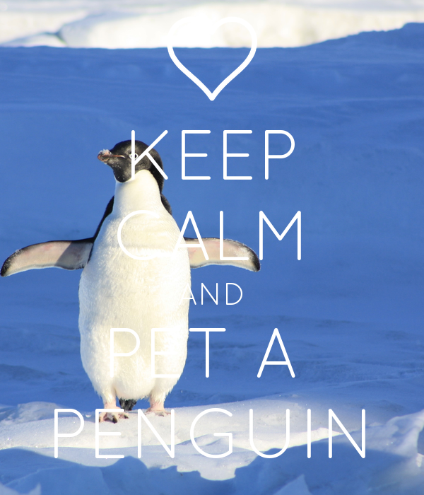 KEEP CALM AND PET A  PENGUIN