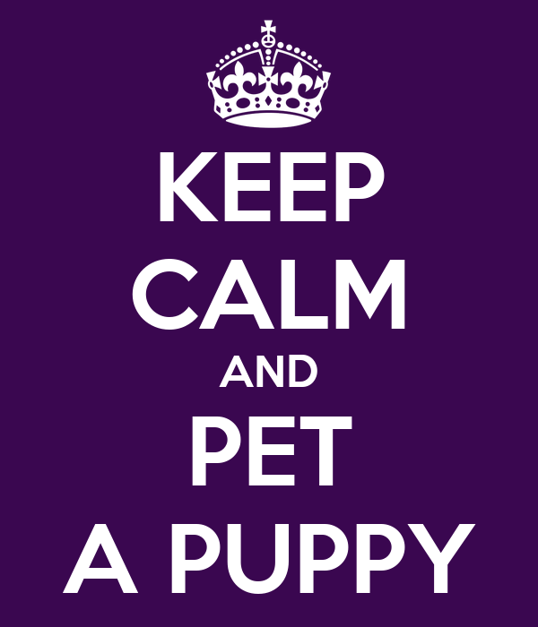 KEEP CALM AND PET A PUPPY