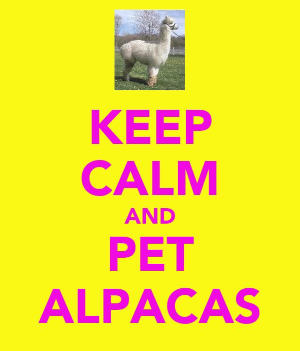 KEEP CALM AND PET ALPACAS