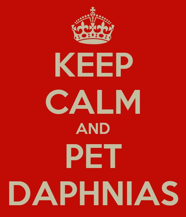 KEEP CALM AND PET DAPHNIAS