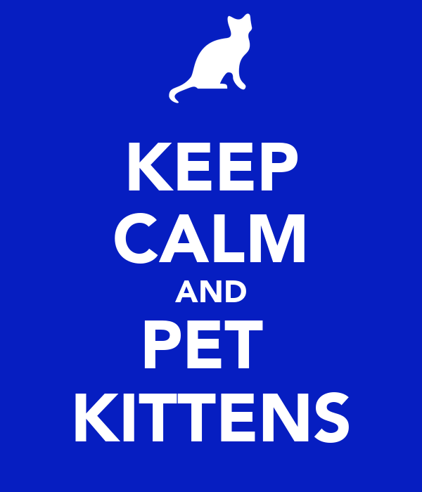 KEEP CALM AND PET  KITTENS