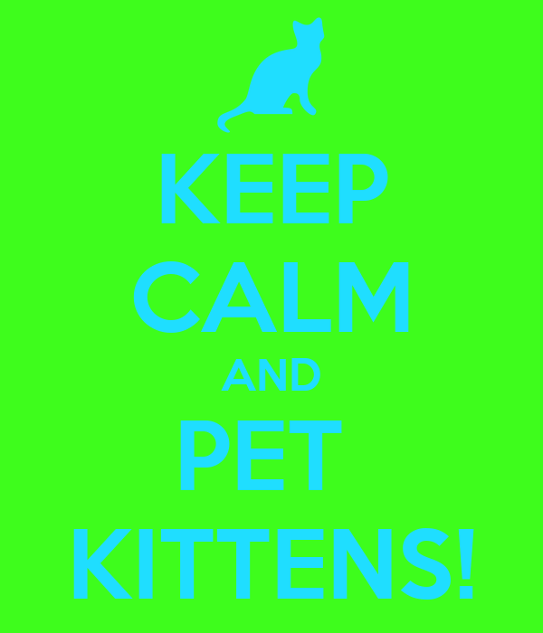 KEEP CALM AND PET  KITTENS!