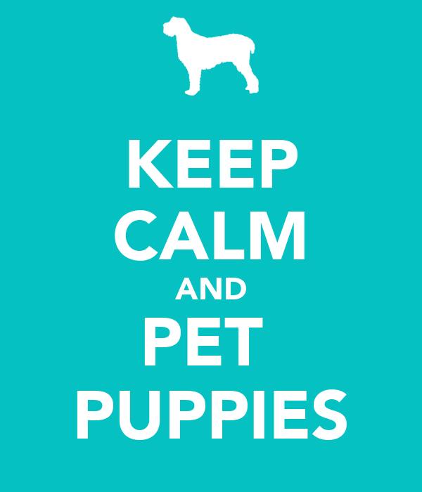 KEEP CALM AND PET  PUPPIES