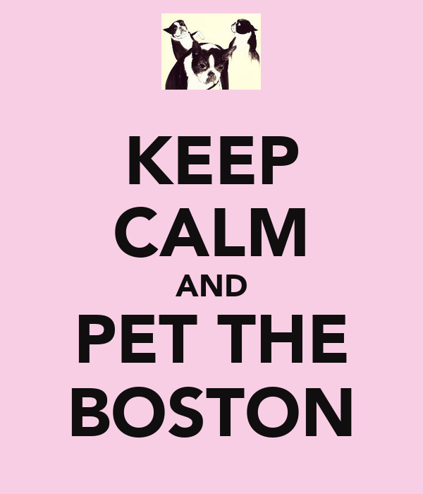 KEEP CALM AND PET THE BOSTON