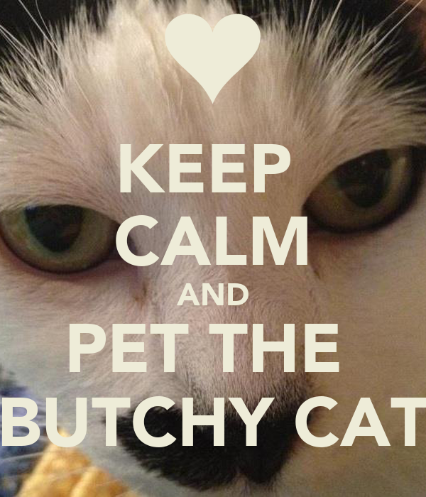 KEEP  CALM AND PET THE  BUTCHY CAT