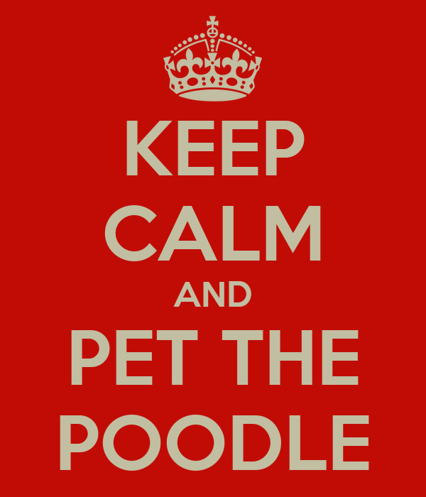 KEEP CALM AND PET THE POODLE