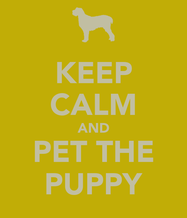 KEEP CALM AND PET THE PUPPY