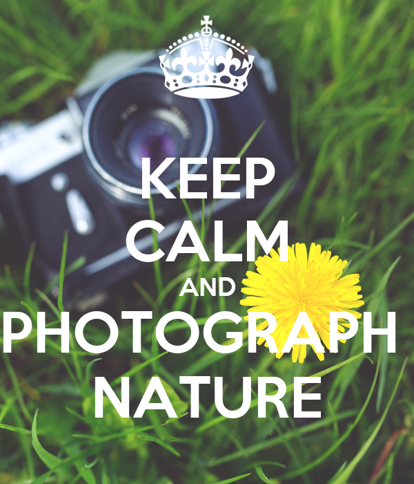 KEEP CALM AND PHOTOGRAPH  NATURE