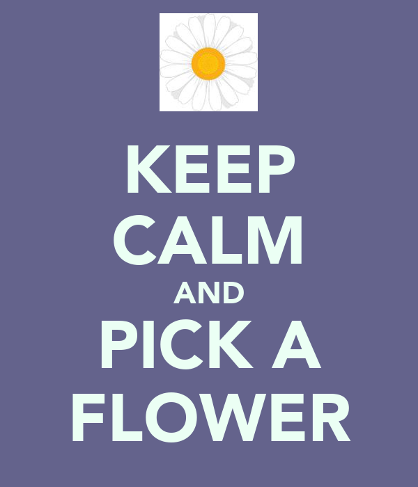 KEEP CALM AND PICK A FLOWER