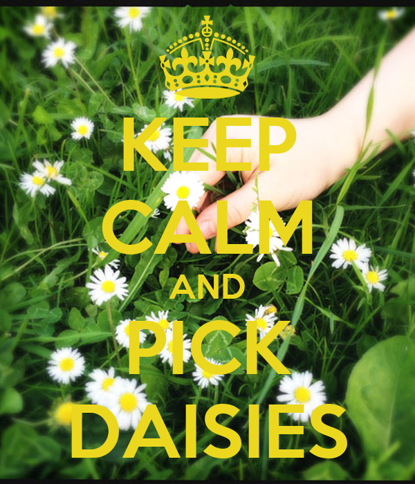 KEEP CALM AND PICK DAISIES