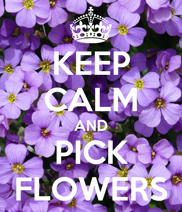 KEEP CALM AND PICK FLOWERS