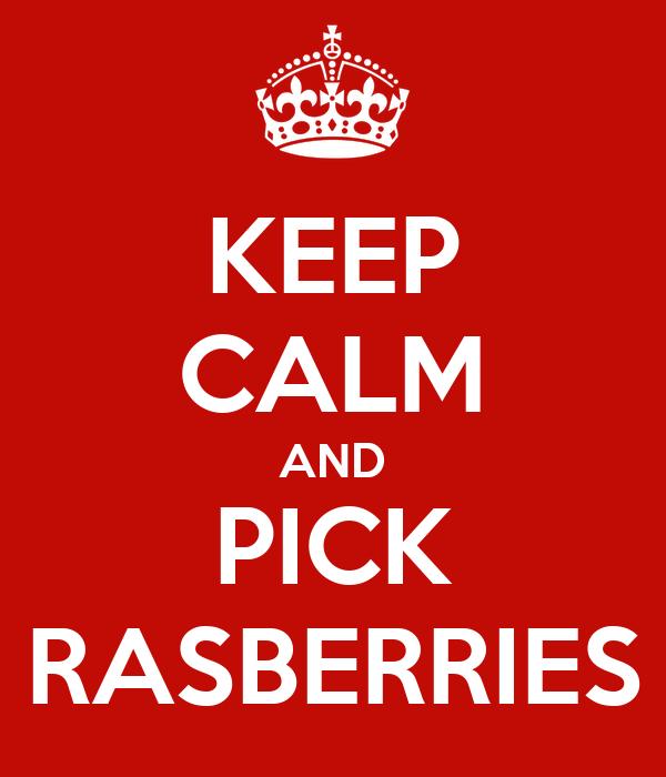 KEEP CALM AND PICK RASBERRIES
