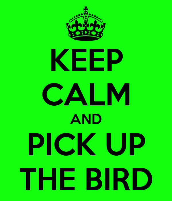 KEEP CALM AND PICK UP THE BIRD