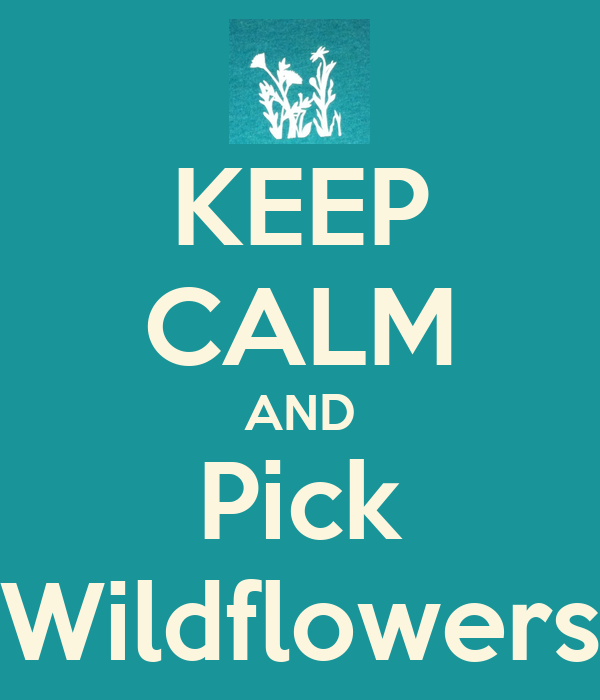 KEEP CALM AND Pick Wildflowers