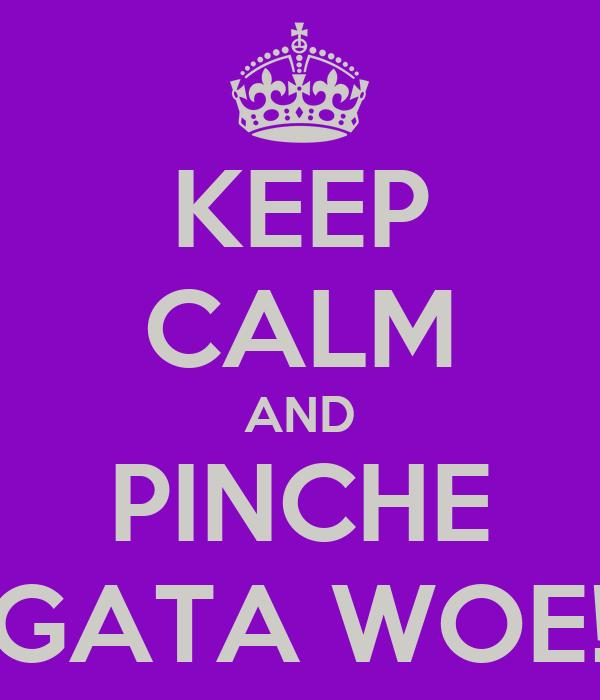 KEEP CALM AND PINCHE GATA WOE!