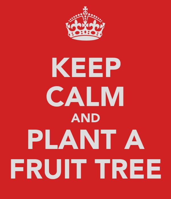 KEEP CALM AND PLANT A FRUIT TREE
