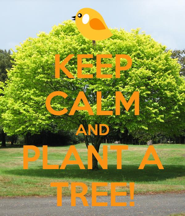 KEEP CALM AND PLANT A TREE!