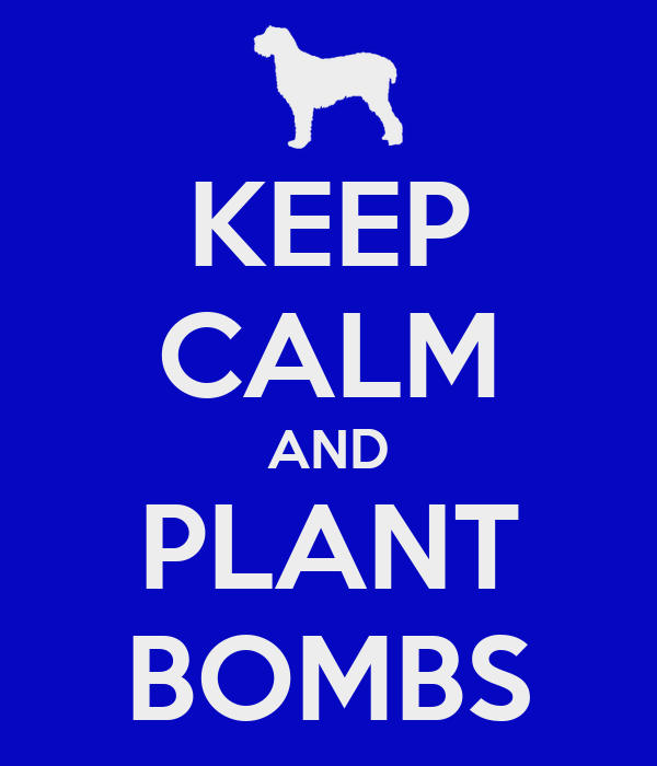 KEEP CALM AND PLANT BOMBS