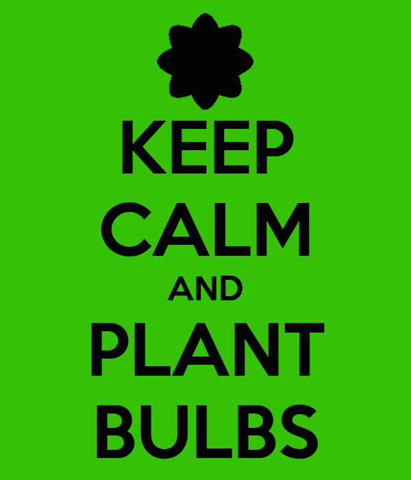 KEEP CALM AND PLANT BULBS