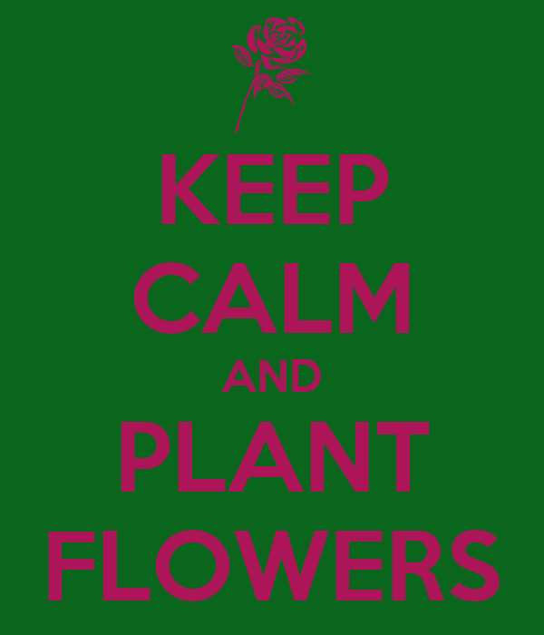 KEEP CALM AND PLANT FLOWERS