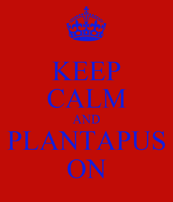 KEEP CALM AND PLANTAPUS ON