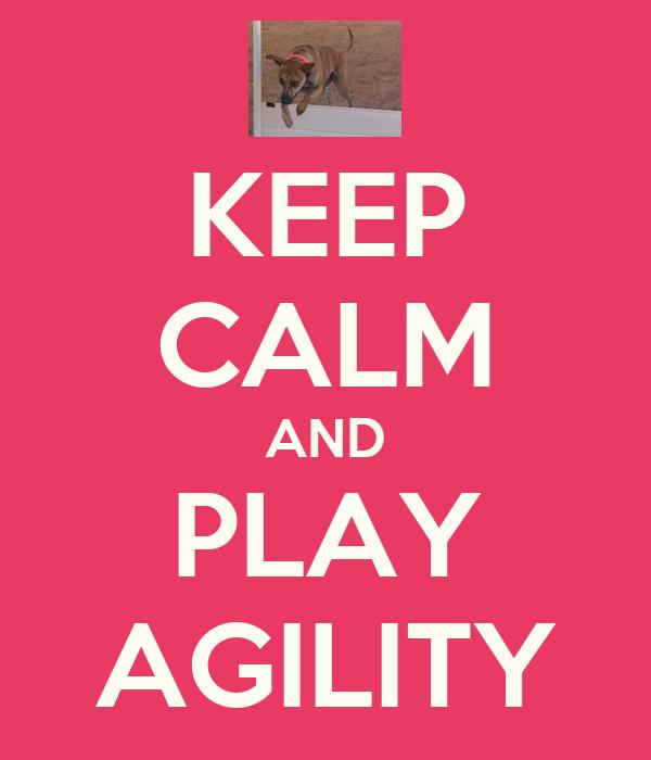 KEEP CALM AND PLAY AGILITY