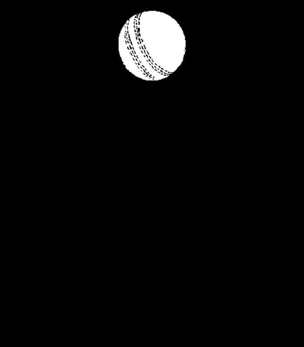 KEEP CALM AND play  cricket