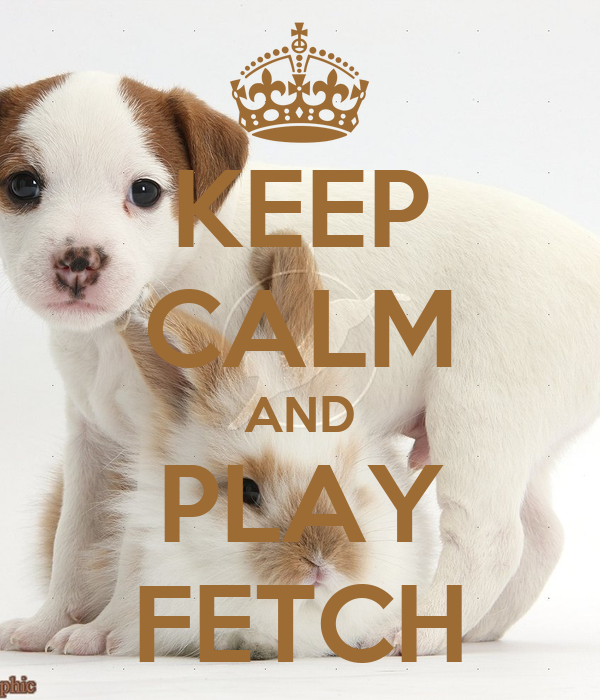 KEEP CALM AND PLAY FETCH