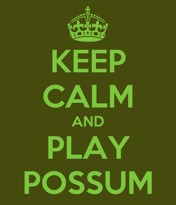 KEEP CALM AND PLAY POSSUM