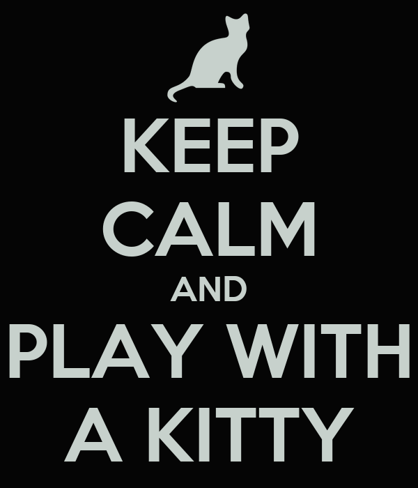 KEEP CALM AND PLAY WITH A KITTY