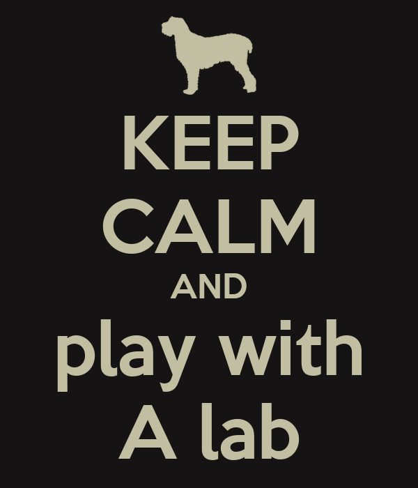 KEEP CALM AND play with A lab