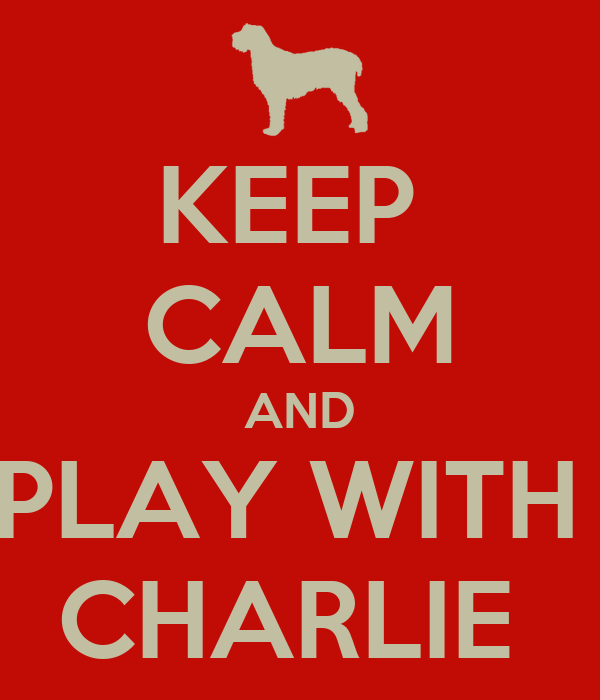 KEEP  CALM AND PLAY WITH  CHARLIE