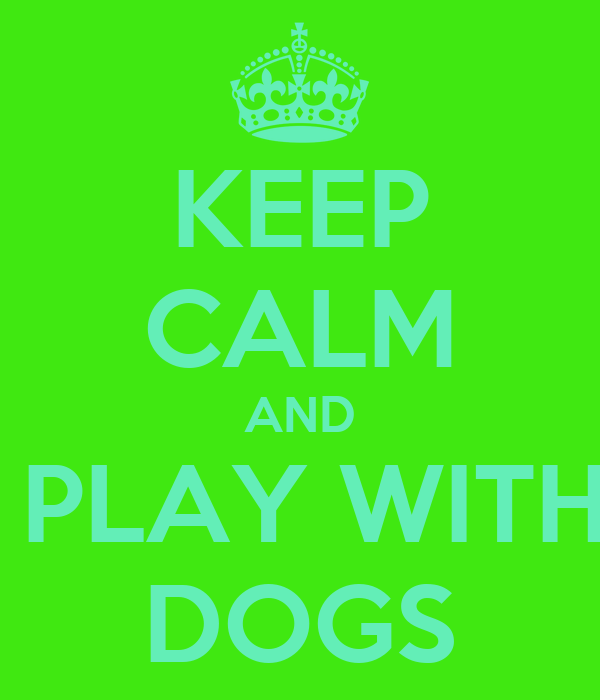 KEEP CALM AND  PLAY WITH DOGS