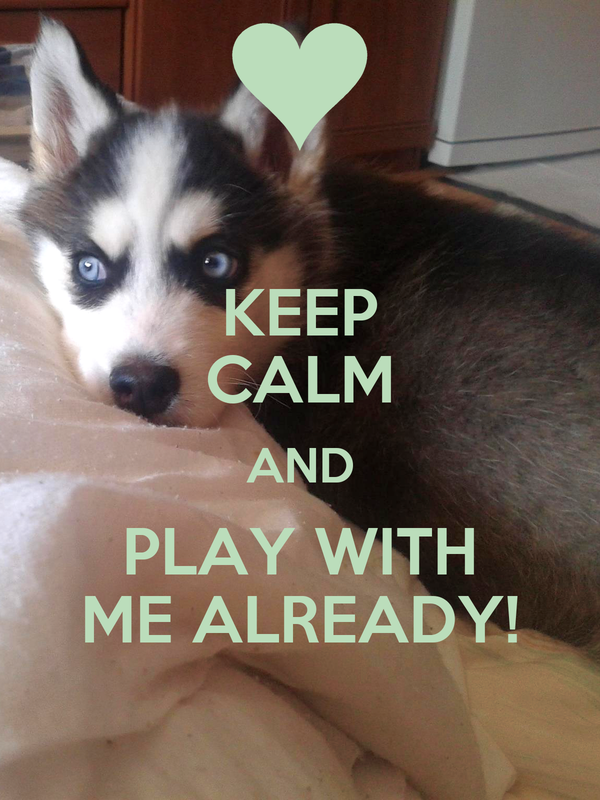 KEEP CALM AND PLAY WITH ME ALREADY!