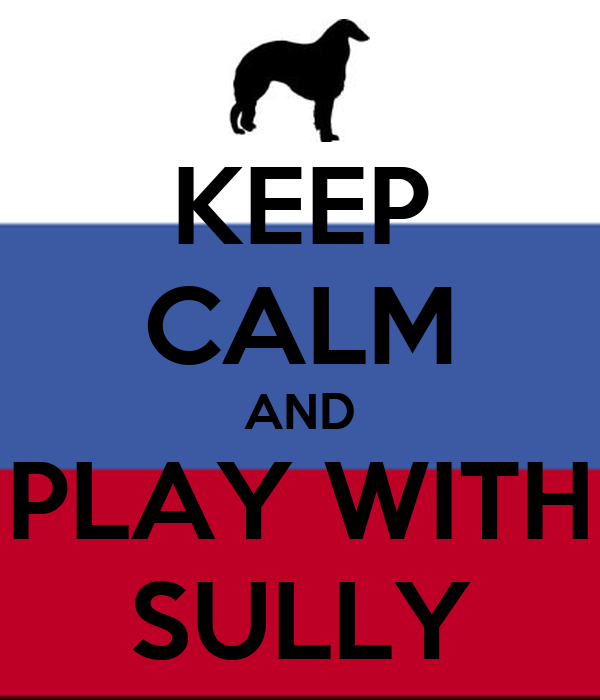 KEEP CALM AND PLAY WITH SULLY