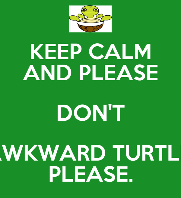 KEEP CALM AND PLEASE DON'T AWKWARD TURTLE. PLEASE.