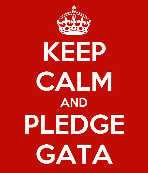 KEEP CALM AND PLEDGE GATA